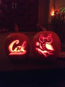 Pumpkin cal, pumpkin owl