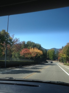 On the way to my house: I had to throw that in there because the leave changing colors makes me excited for fall!