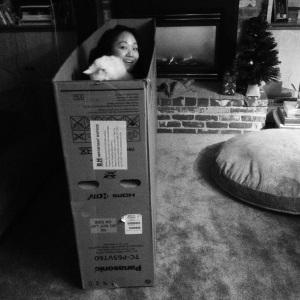 tv box amy skyler