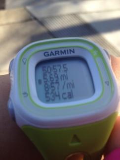 garmin run