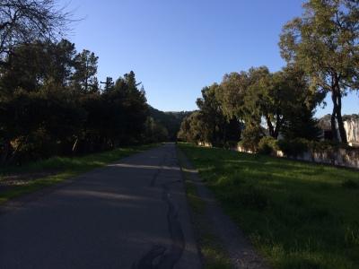 iron horse trail run