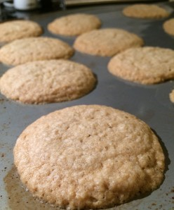 danish oatmeal cookies dessert
